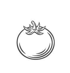 tomato vegetable outline icon vector image