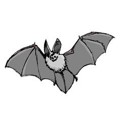 bat vector image