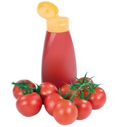 Ketchup vector image vector image