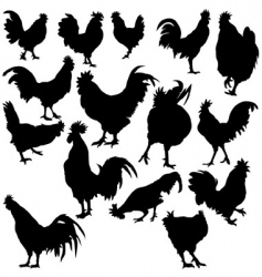 rooster silhouettes vector image vector image