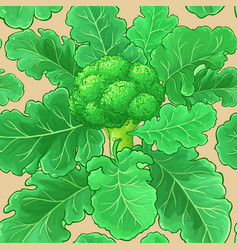 broccoli plant pattern on color background vector image