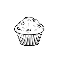 Muffin hand drawn sketch icon vector