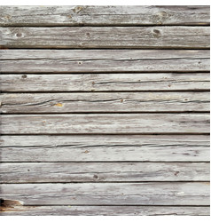 Rustic old pale timber wood wall floor vector