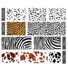 seamless pattern dalmatian leopard spots vector image