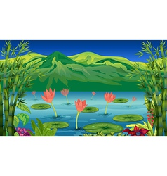 The water lilies and flowers at the lake vector image