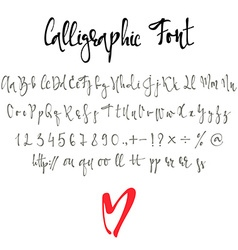 Calligraphic font with numbers ampersand and vector image vector image