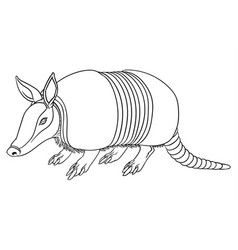 a cute armadillo vector image