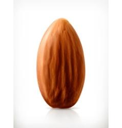 Almond icon vector