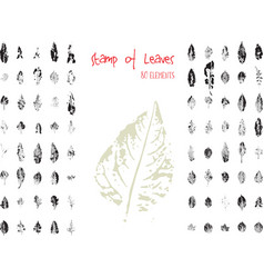 collection of black paint seal leaves of trees and vector image