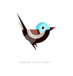 Colored superb fairy wren icon abstract bird vector