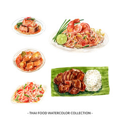 Creative design isolated watercolor thai food vector