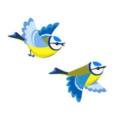 flying blue tit isolated on white background vector image