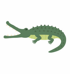 funny crocodile isolated on vector image