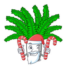 Santa with candy fresh fern branch isolated on vector
