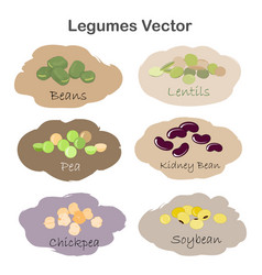Set of different cartoon legumes labels isolated vector