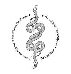 Two serpents intertwined vector
