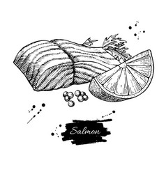 Salmon fillet hand drawn vector