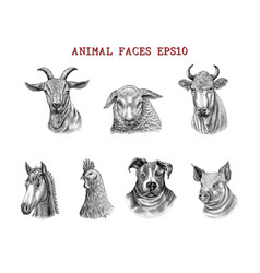 animal faces hand draw engraving style black and vector image