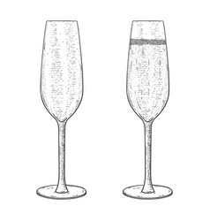 champagne glass empty and full hand drawn sketch vector image