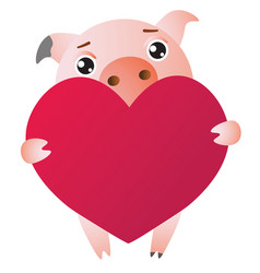 Cute cartoon pig with red large heart vector