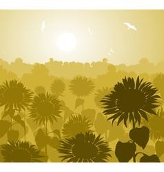 Garden of Sunflowers Sketch vector image vector image