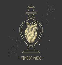 human heart in glass bottle vector image