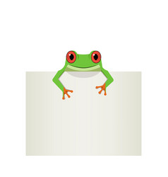 red eye frog on top white paper vector image