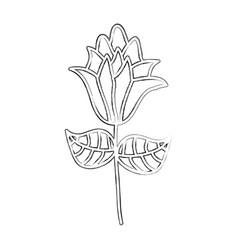 sketch draw flower cartoon vector image