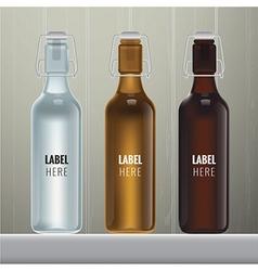 Blank glass bottles vector