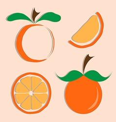 set of orange icon vector image