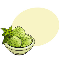 Bowl of matcha green tea ice cream scoops vector
