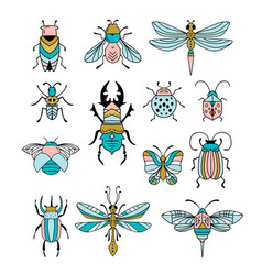 Bugs insects butterfly ladybug beetle vector
