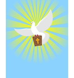 Dove and Bible Holy Bible in its paws White pigeon vector image