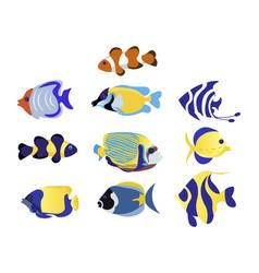 exotic fish set animal flat vector image