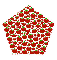 Filled pentagon composition of tomato vector