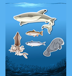 ocean animals stickers on sea background vector image
