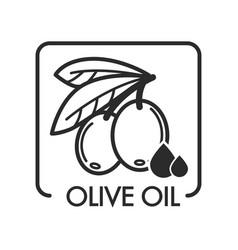 Olive oil extra virgin monochrome sketch outline vector