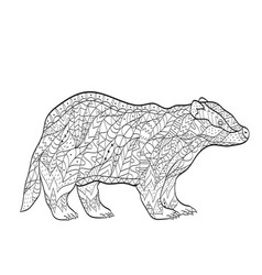 coloring european badger for adults vector image