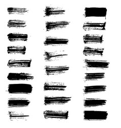 set of black paint brush spots vector image vector image