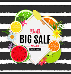 abstract summer sale background with fresh fruits vector image