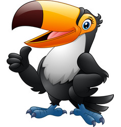 cartoon funny toucan giving thumb up vector image