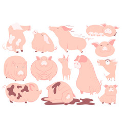 funny pink pigs set chinese new year 2019 symbol vector image
