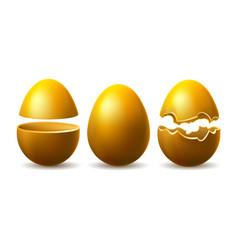 golden eggshell vector image