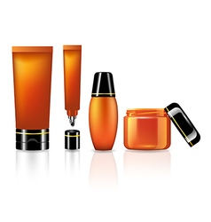 Product set for skin care of orange collection vector