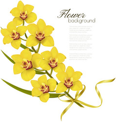 Holiday flowers background with yellow orchids and vector image vector image