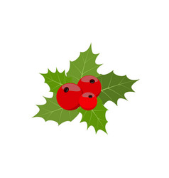 Christmas berries and green leaf vector