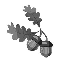 Oak branch with acorns icon gray monochrome style vector image