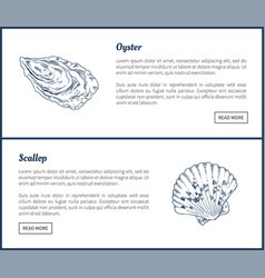 oyster and scallop vintage vector image