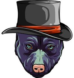Pitbull dog with hat design vector
