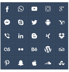 popular social media icons such as facebook vector image